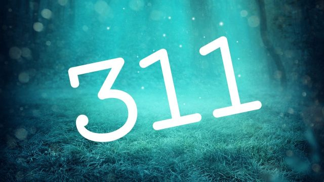 311 Meaning | What Does 311 Mean | 311 Angel Number