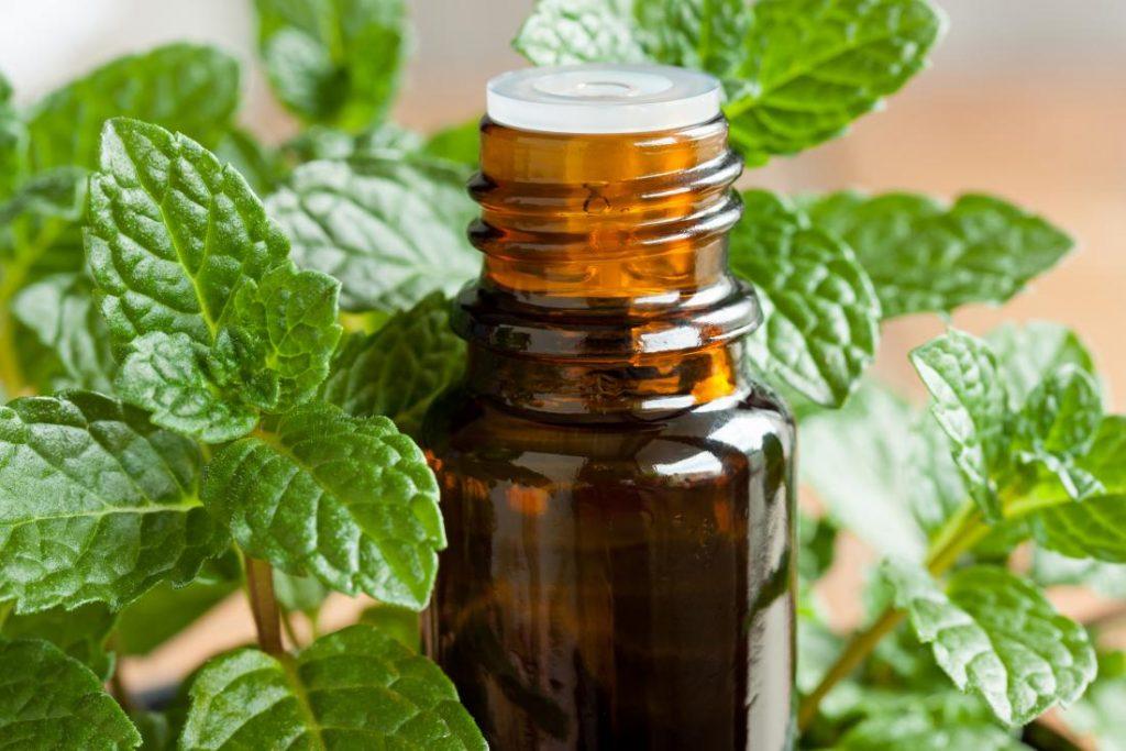 Best Essential Oil for Sinus Headache