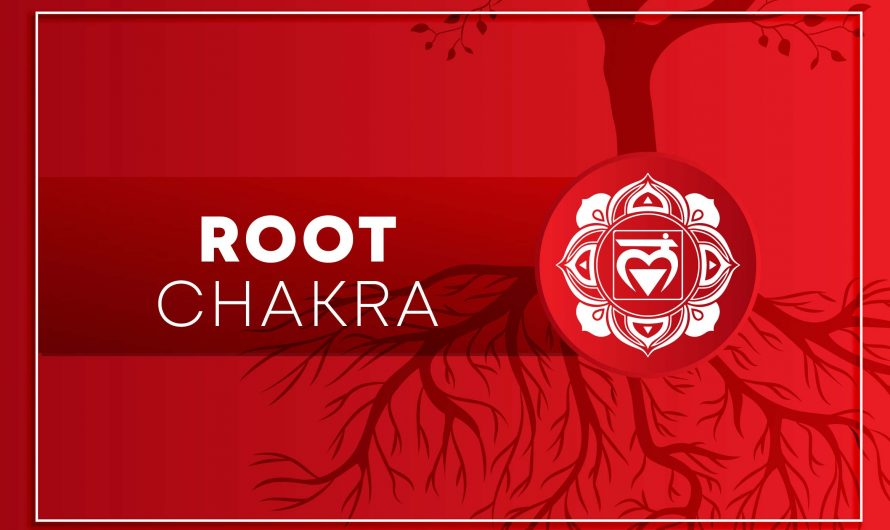 Most Practiced Root Chakra Affirmations